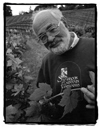 Dr. J. Bernard Seps of Storybook Mountain Vineyards